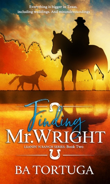 Finding Mr Wright Kindle 1500 x 2500